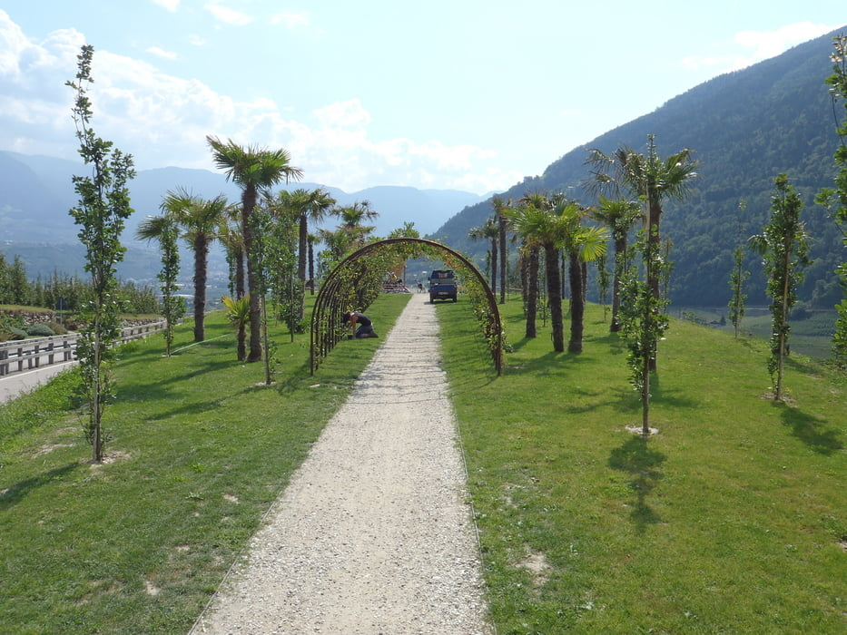 Fahrrad Touring: Etschradweg Naturns Bozen (Tour 88663)