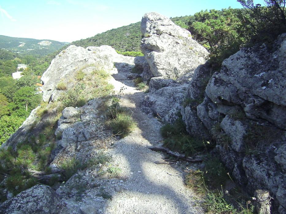 Mödlinger Klettersteig : Klettersteig mödlinger robert karpfen
