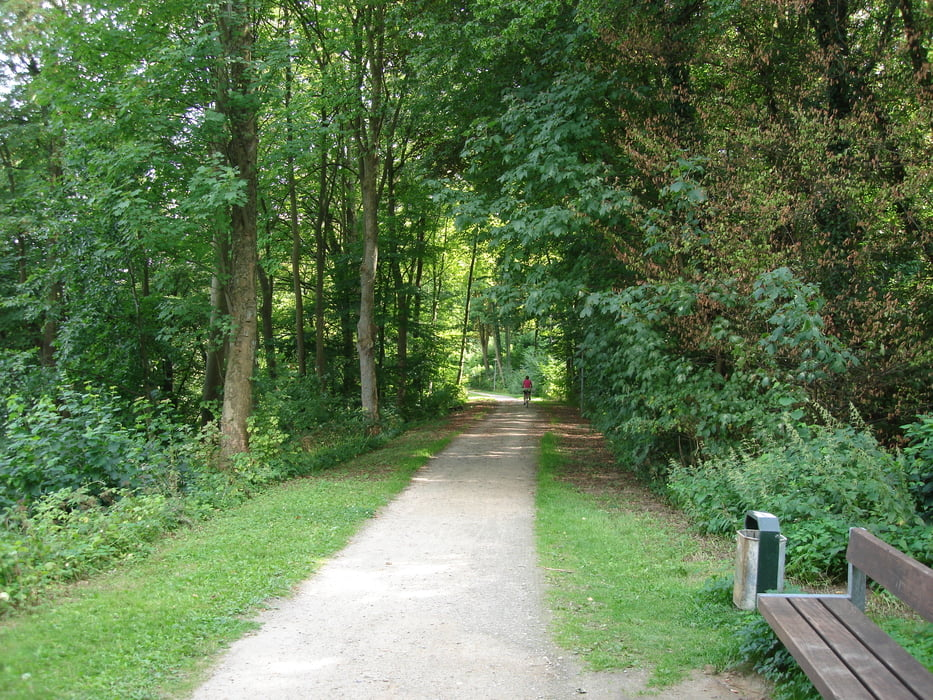 Fahrrad Touring: Rundfahrt Ratzeburger See (Tour 46194)