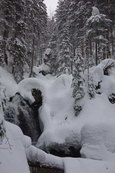 Schneeschuh Bodenmais Chamer Hutte Bodenmais Tour 166902