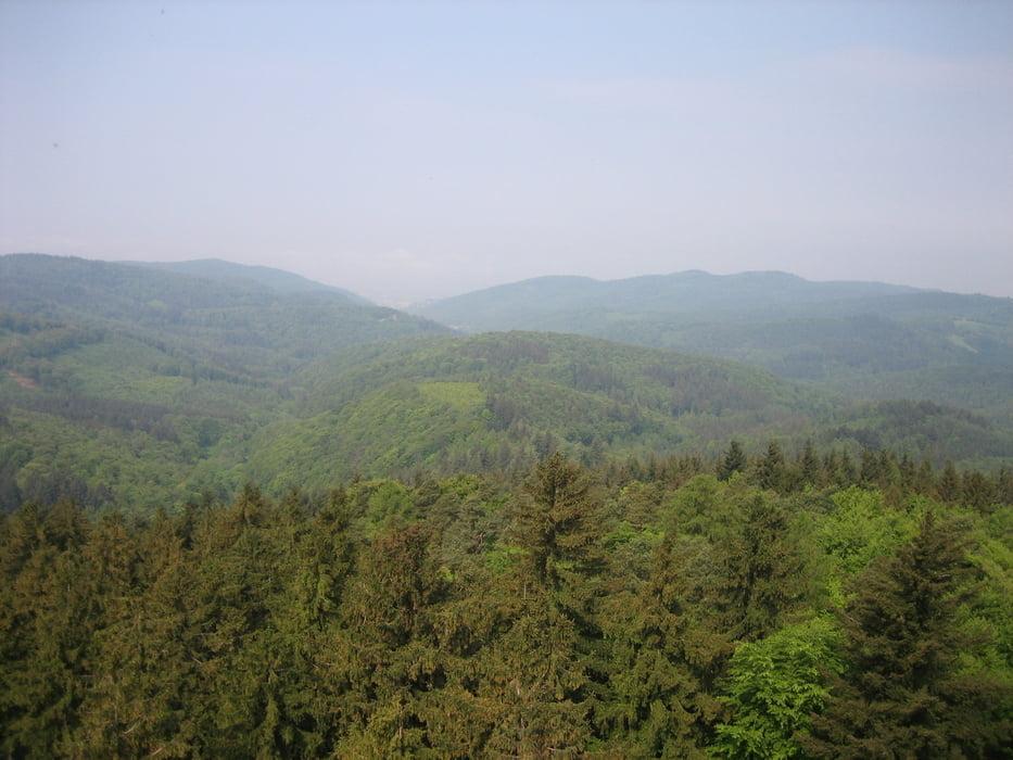 Single-Trail Runde