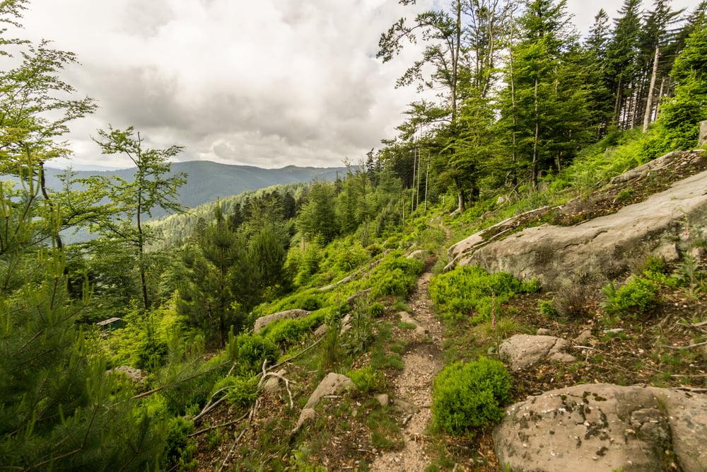 Klettersteig Vogesen : Wandern: windsbourg rocher de mutzig porte pierre tour 163756