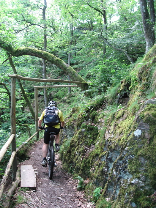 Mountainbike: Eifel Lieserpfad (Tour 41658)