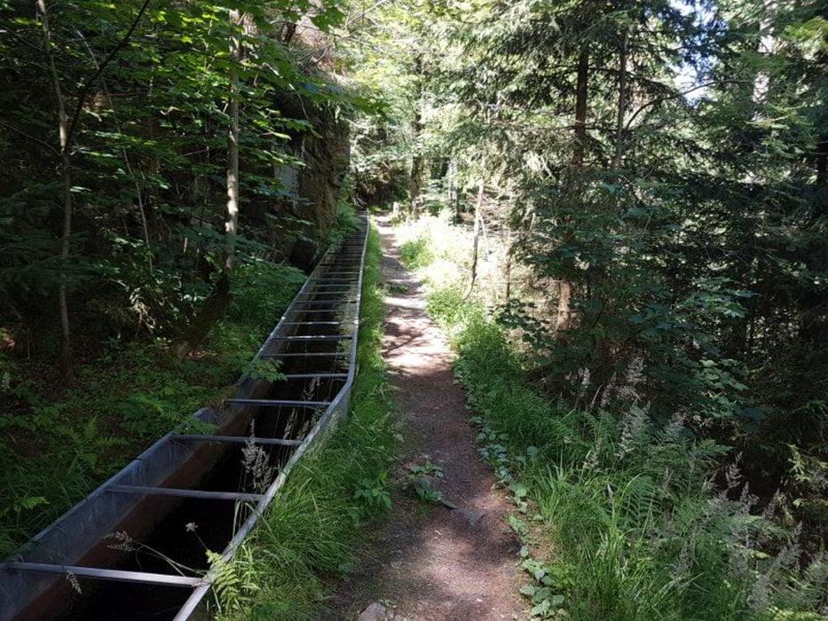 Wanderung am Günen Graben