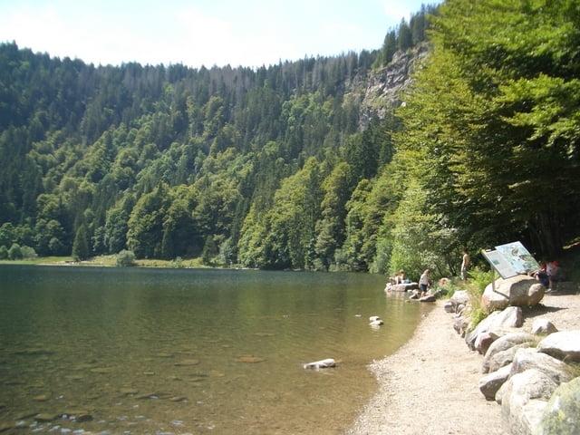 Mountainbike: Drei Seen Tour Schluchsee Feldsee Titisee