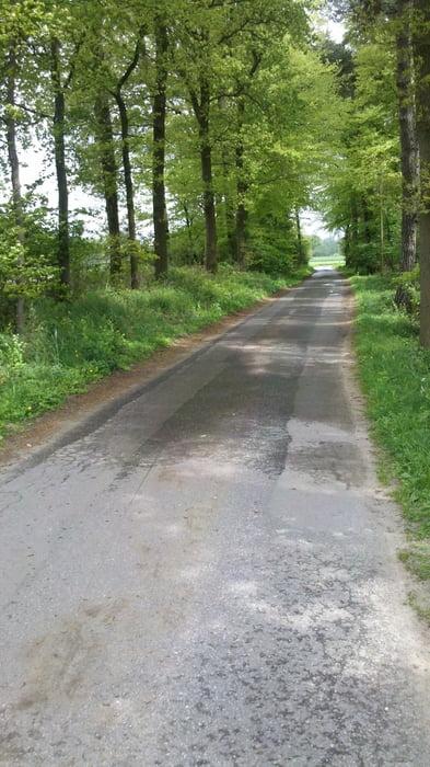 Fahrrad Touring: Ostbevern (Tour 99661)