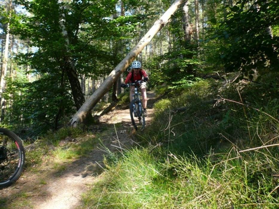 Singletrails wolfsburg