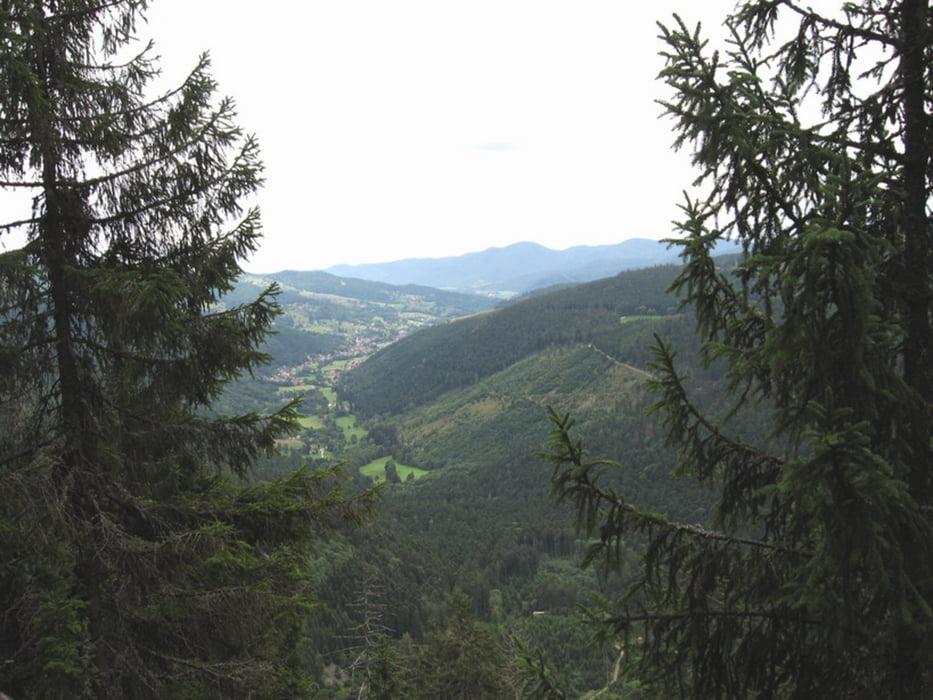 Klettersteig Vogesen : Wandern felsenweg col de la schlucht vogesen tour