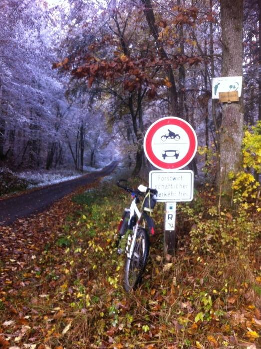 Mountainbike: Von Zeil am Main zur Schwedenschanze und