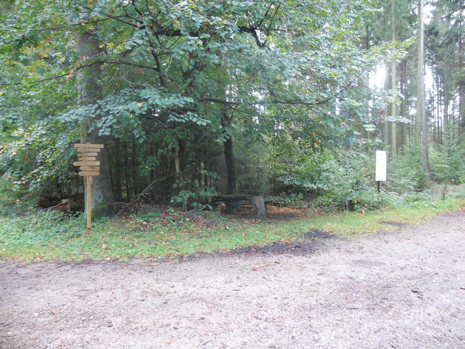 mountainbike sonnige herbst tour im odenwald tour 91354. Black Bedroom Furniture Sets. Home Design Ideas