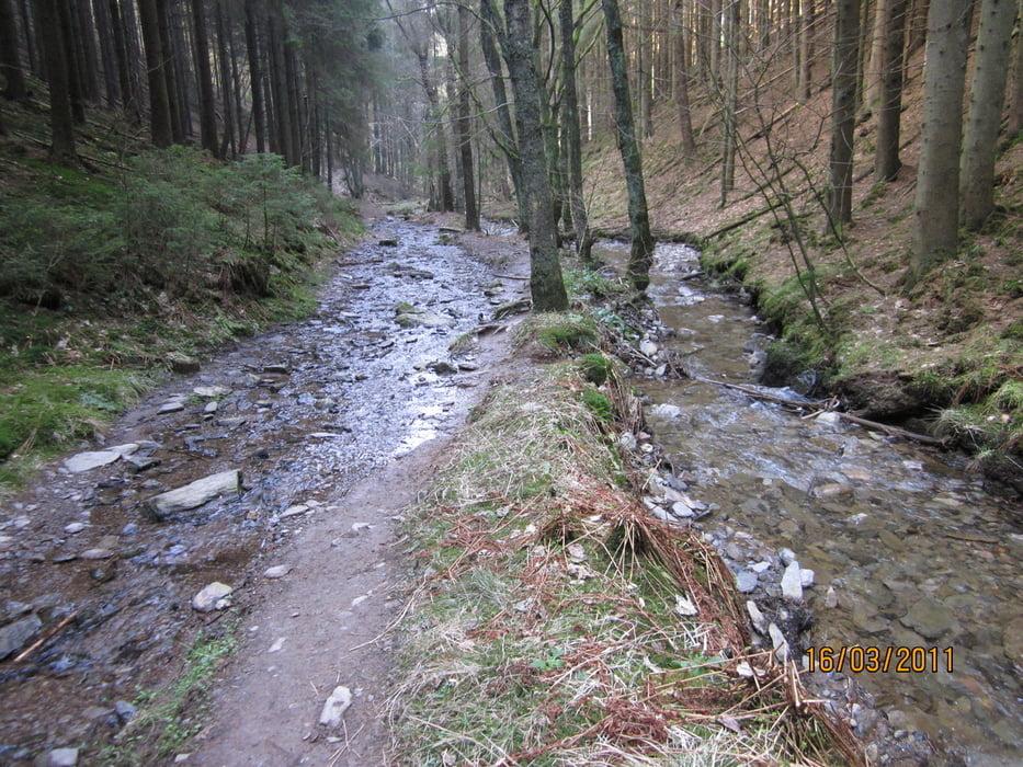 Klettersteig Ardennen : Wildtrails bis jupille rendeux abenteuersport ardennen belgien