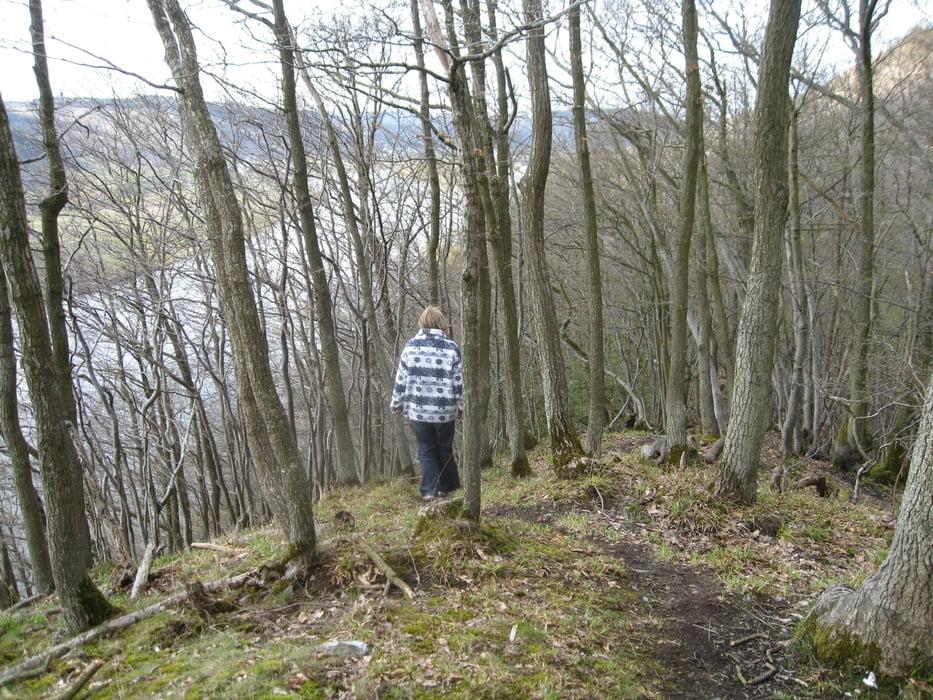 Klettersteig Riol : Wandern: mehringer schweiz tour 53963