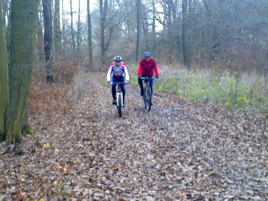 Mountainbike: HorasTrätzhofBimbachGroßenlüderFulda (Tour