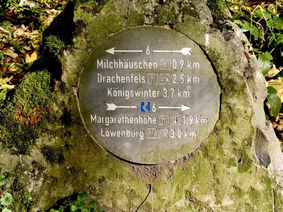 Wandern Siebengebirge Grosser Olberg Haus Schlesien Chorruine