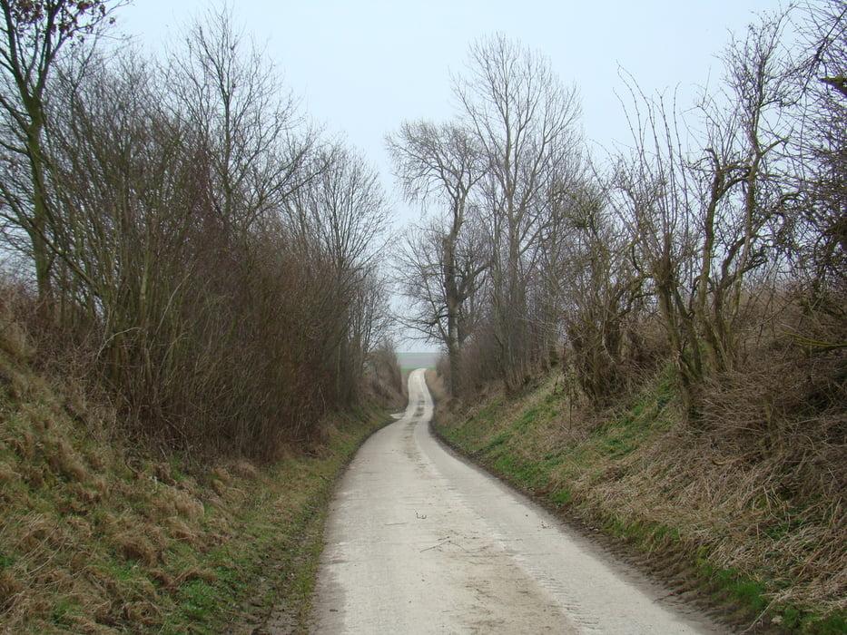 5 km wandelen