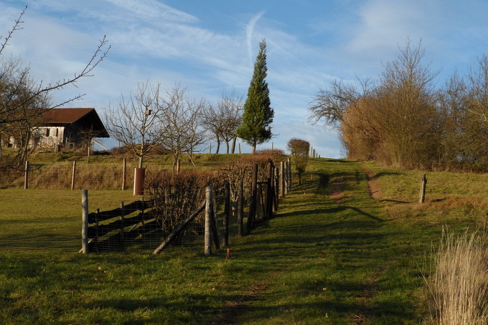 Klettersteig Odenwald : Klettersteig: starkenburger klettersteig mit rundtour tour 112614