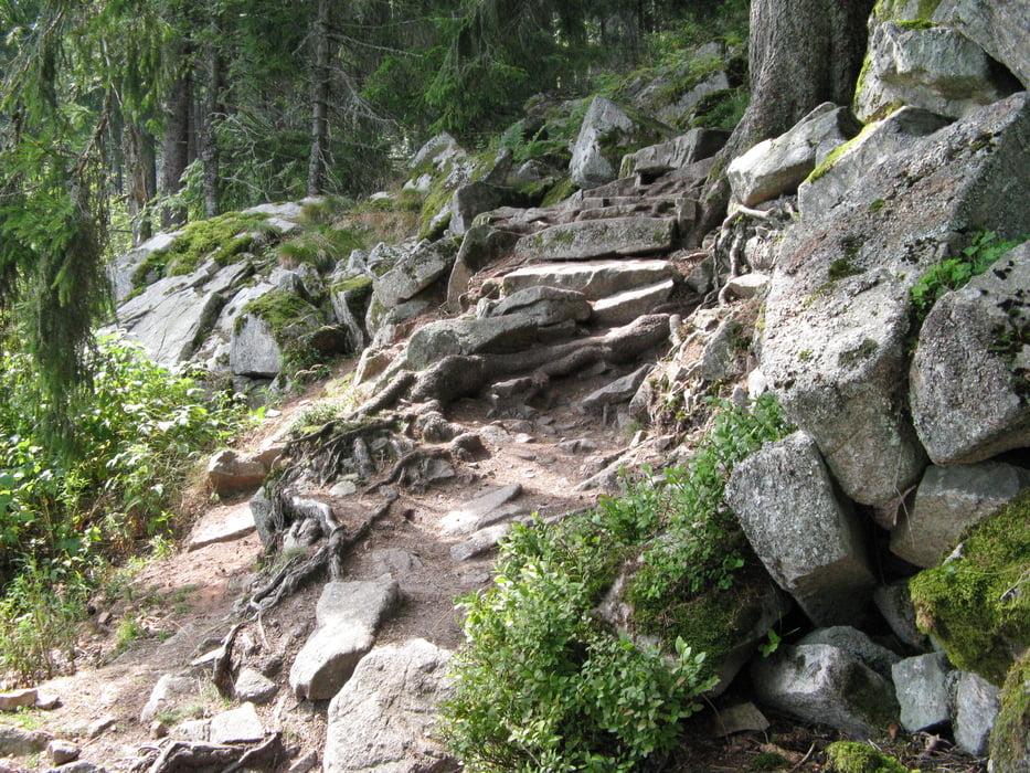 Klettersteig Vogesen : Wandern: höhenwanderung am lac blanc tour 22771