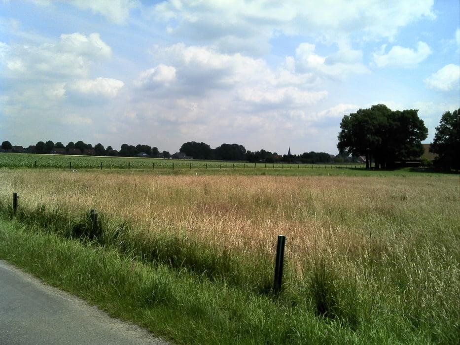 Fahrrad Touring: Von Marl durch den Hervester Bruch nach