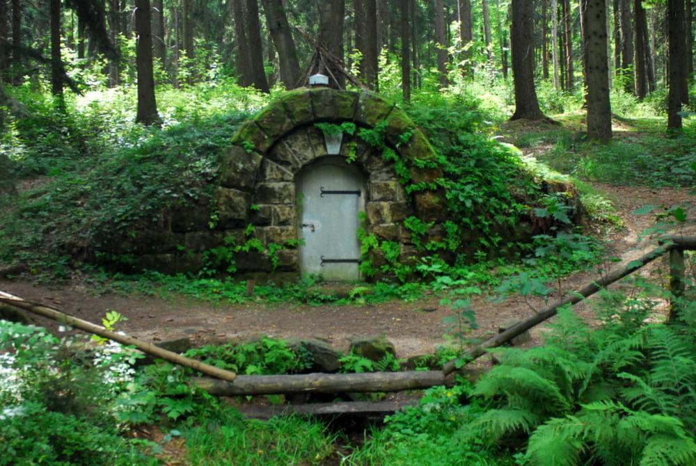 Wandern Tharandter Wald