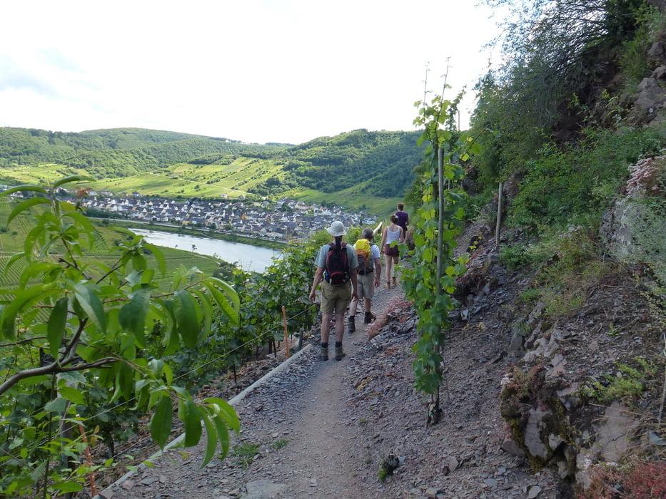 Klettersteig Mosel : Wandern calmont klettersteig und an der mosel zurück tour