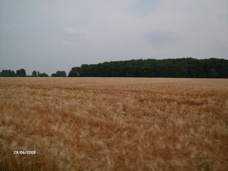 Fahrrad Touring: Ahlen Vorhelm Ennigerloh Neubeckum Vellern