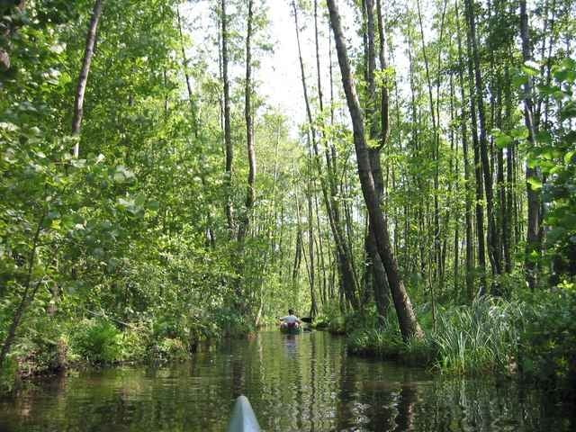 Wasserwandern Mecklenburgische Seenplatte Karte.Boot Und Kanu Wasserwandern Mecklenburgische Seenplatte